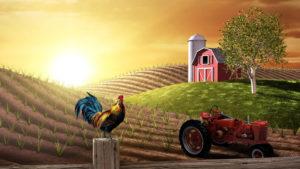 MECANIZAREA AGRICULTURII EBOOK