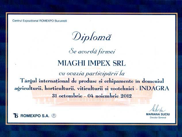 DIPLOMA-12