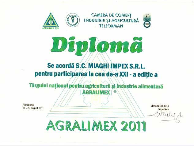 DIPLOMA-8